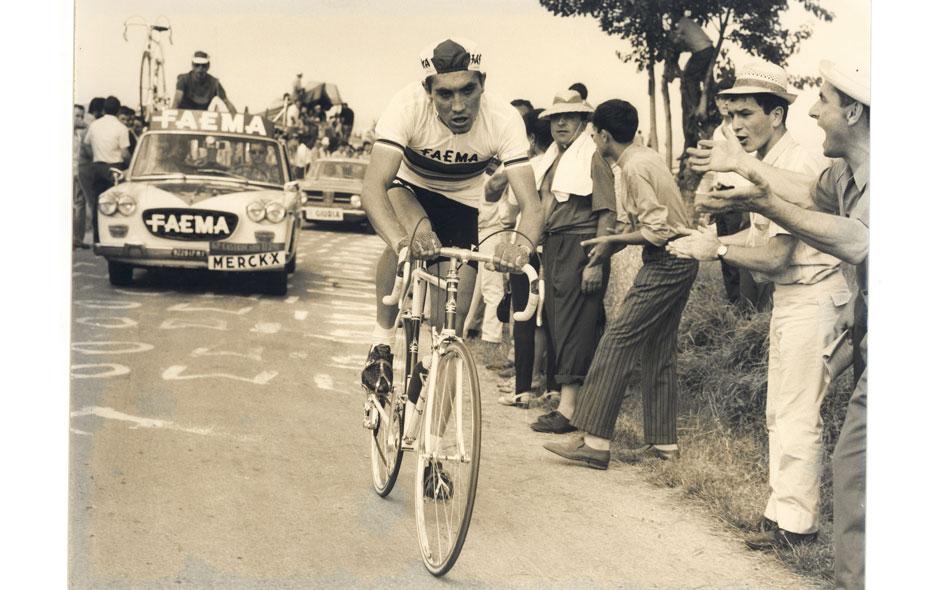 Eddie_Merckx_pedala