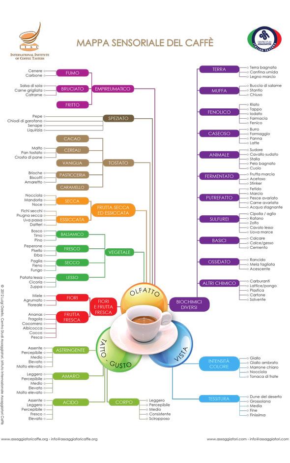 Mappa-Sensoriale-Espresso